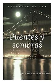 PUENTES Y SOMBRAS <br> (¡en ebook!)