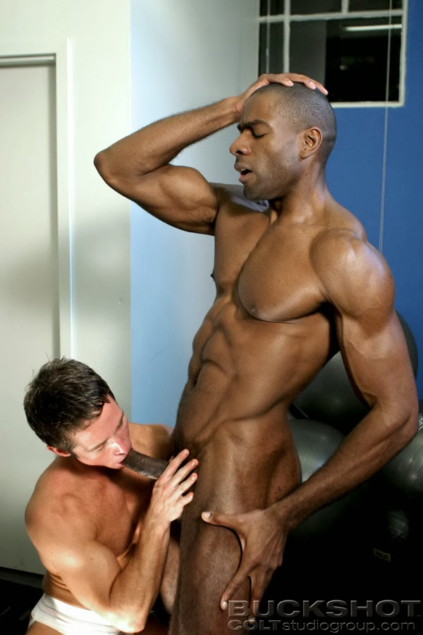 Blog gay teo interview nick young