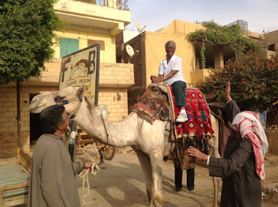 CAMEL RIDE IN GIZA, CAIRO