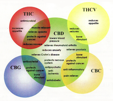 is cbd oil without thc legal in all states