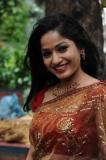 madhavi latha  Pictures in saree 3.jpg