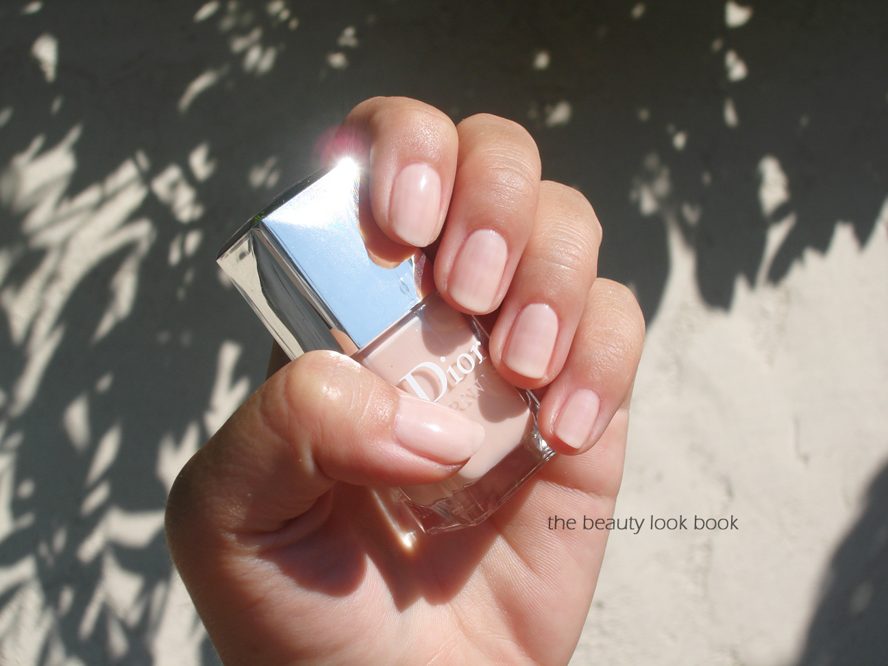 Dior Vernis Nudes in Charnelle, Grège, Trench and Dune