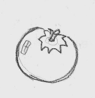 Tomato source drawing