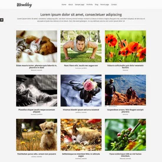 http://2.bp.blogspot.com/-MUcXUCEvPsY/U9jEe3zBekI/AAAAAAAAaA0/Jeo5dML96Zk/s1600/Wembley-Free-premium-portfolio-WordPress-theme.jpg