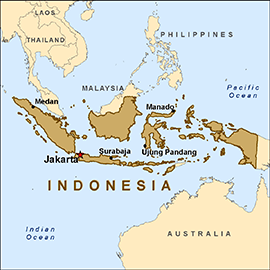 Indonesia Ends the Six Month Metal Ore Export Ban