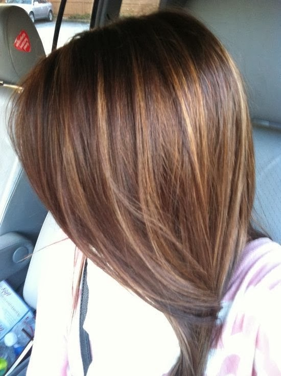 ... Brown Hair with Caramel Highlights Dark Brown Hair With Light Brown