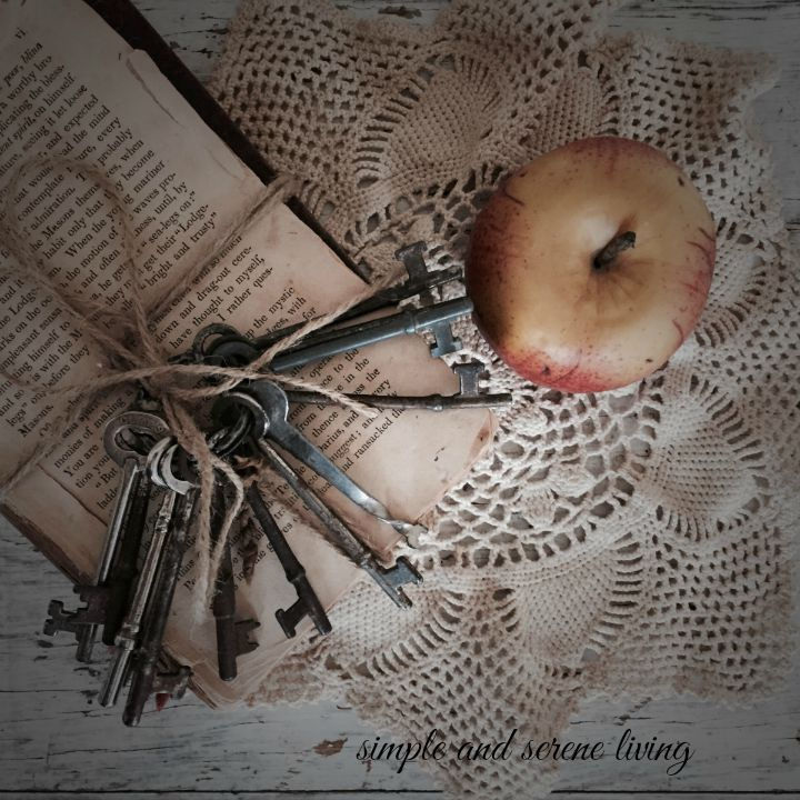 old book keys apple autumn
