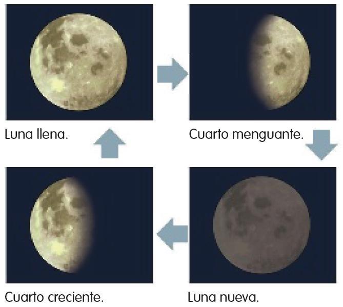 El maestro antonio el sol la tierra y la luna Cuando hay luna creciente