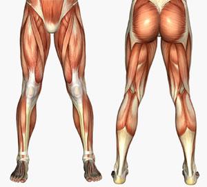 Memperkuat Otot Kaki,memperkuat otot kaki,memperkuat otot kaki bayi,cara memperkuat otot kaki,latihan memperkuat otot kaki,latihan untuk memperkuat otot kaki,tips memperkuat otot kaki,tips cara memperkuat otot kaki,kumpulan cara memperkuat otot kaki,cara cepat memperkuat otot kaki