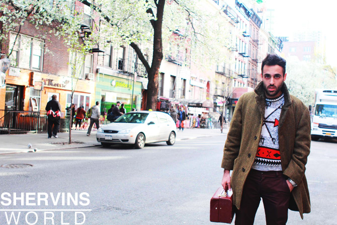 shervin nassi, blogger, founder of shervins world