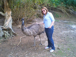 Emu, Currumbin Wildlife Sanctuary review, Gold Coast