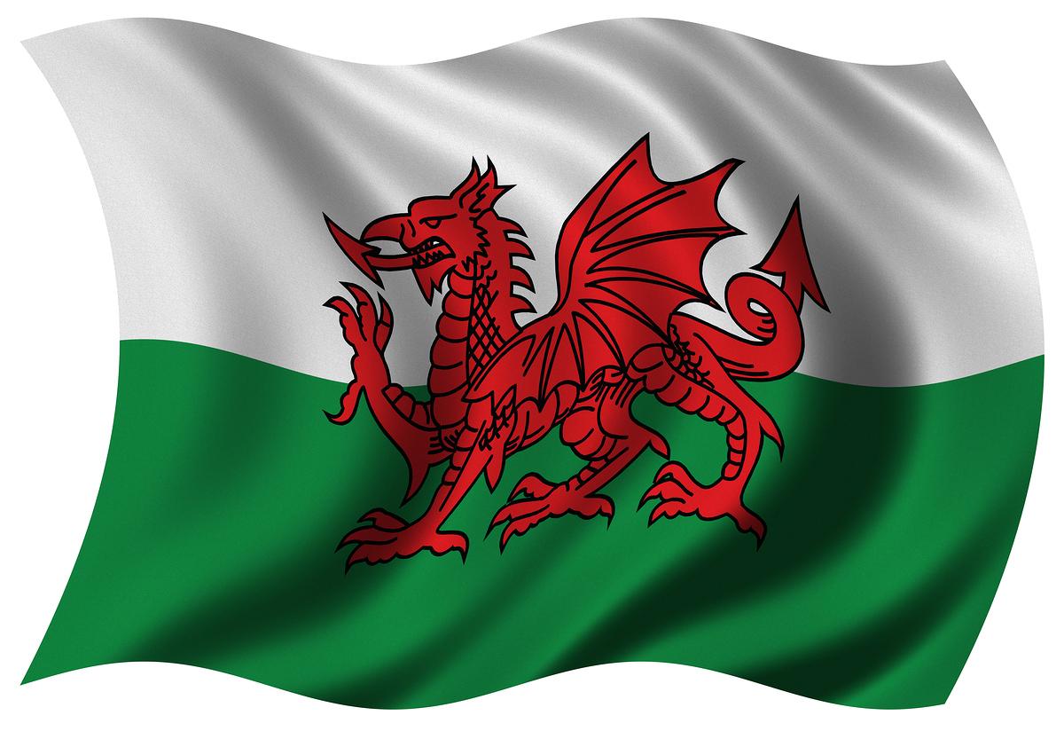 http://2.bp.blogspot.com/-MVU9cJxUxTY/TxdX9N9u-VI/AAAAAAAAAA4/PGFql7aMS8U/s1600/Welsh-Flag.jpg