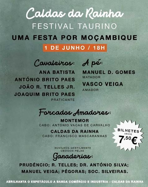 Uma Festa por Moçambique