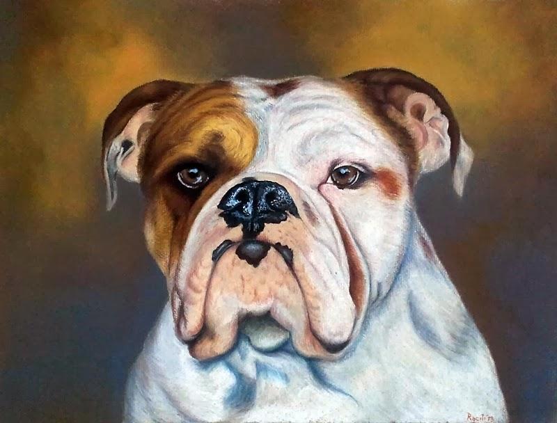 Fiona Bulldog inglese derwent drawing