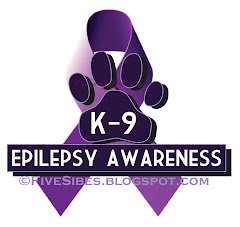 K9 Eplilepsy Info &amp; Epi-Dogs From Across the World Video