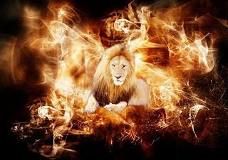 Fire-lion-Wallpaper