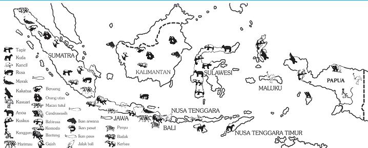 Peta persebaran hewan di ...