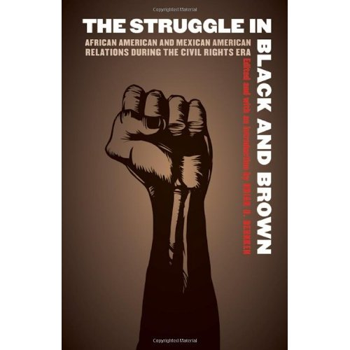 struggle for the chicano The chicano movement has been used by historians to describe a moment of ethnic empowerment and protest among americans of mexican descent beginning in the 1960s.