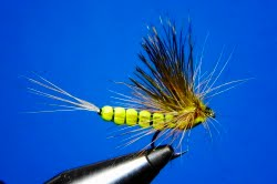 Upwing Mayfly