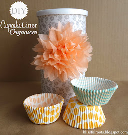 DIY Cupcake Liner Organizer