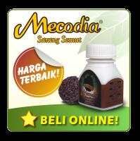 Penyakit Leukimia  - Khasiat Sarang Semut