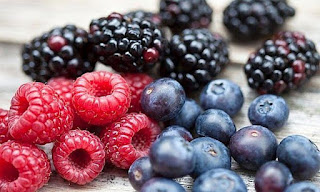فوائد التوت،أنواع التوت،التوت البري،الفراولة،فوائد الفواكه،التغذية السليمة انواع التوت فواكه مفيدة