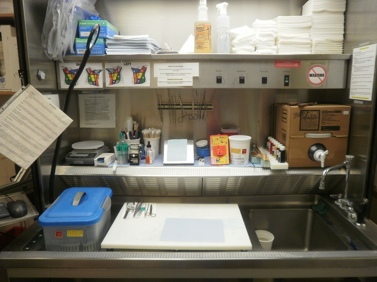 The Making of a Pathologists' Assistant: A Trip to the Pathology ...