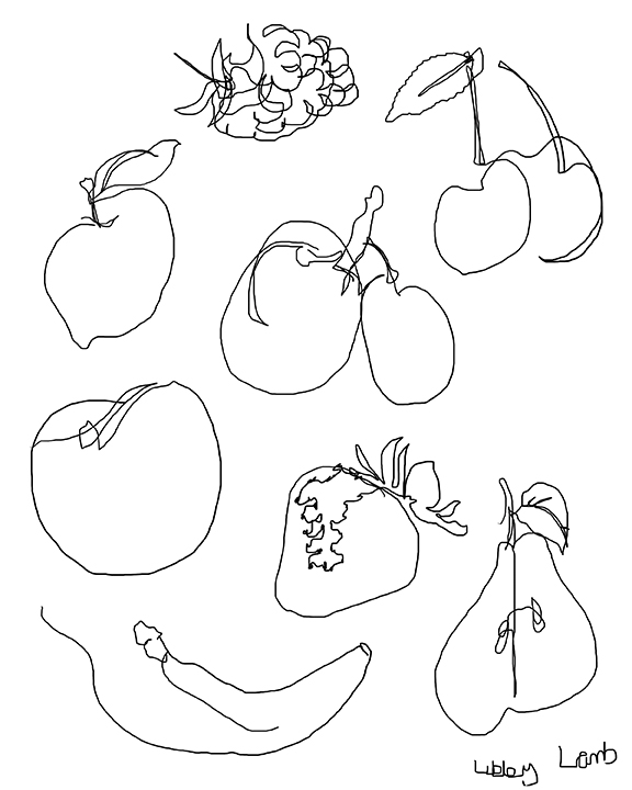 Cross Contour Line Drawing Fruit : Libby lamb wagner may
