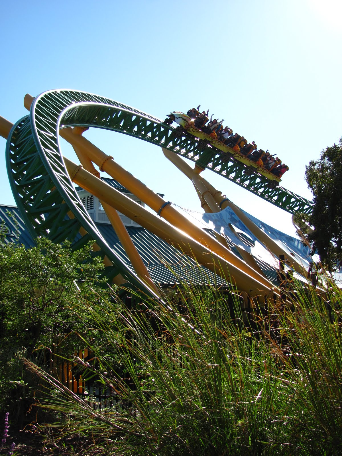 Cheetah Hunt Review - Busch Gardens Tampa - Amusement ...