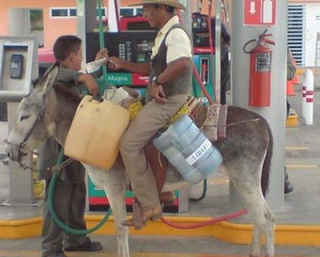 funny picture man with donkey get fuel at gas station