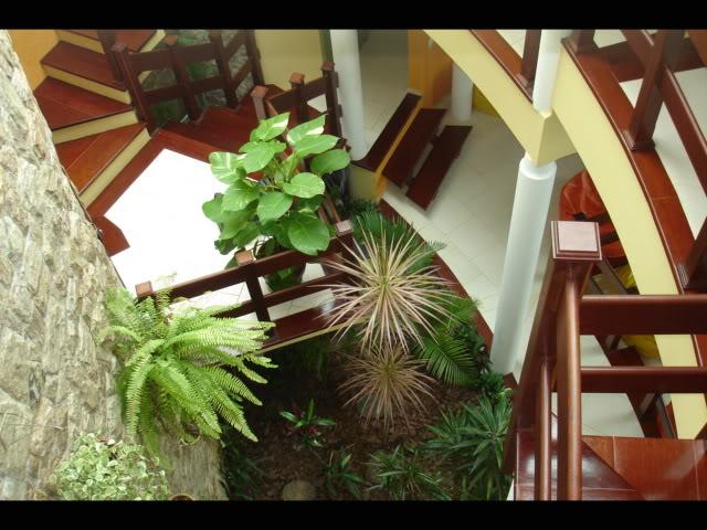 decoracao de interiores jardim de inverno: aventuras no mundo do design de interiores: Jardim de Inverno; Dicas
