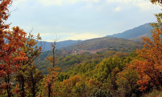 Bosques de otoño en la Sierra del Rincón en Madrid