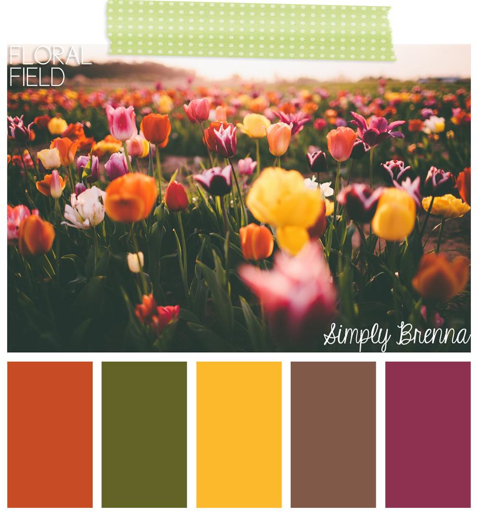 simplybrenna simply brenna color palette