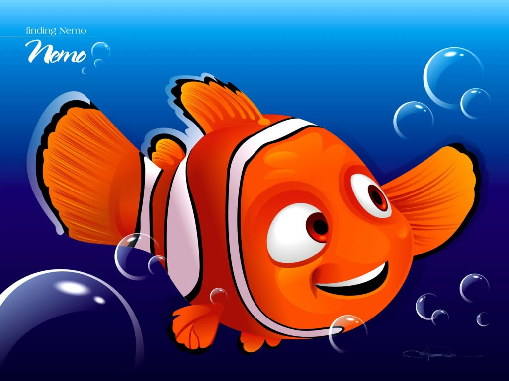 A place for free hd wallpapers desktop wallpapers nemo for Finding nemo fish