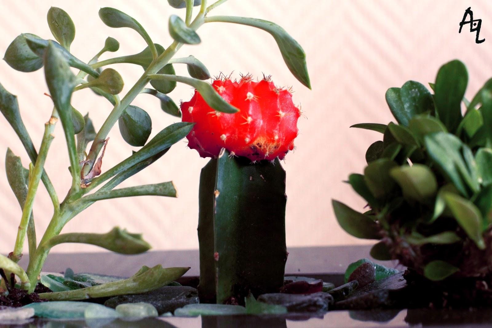 art 39 dennes i 39 m a killer of plants. Black Bedroom Furniture Sets. Home Design Ideas