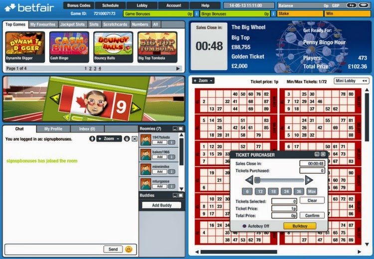 Nordicbet Bingo Ticket Screen
