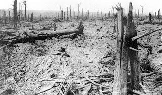 The Battle of Delville Wood