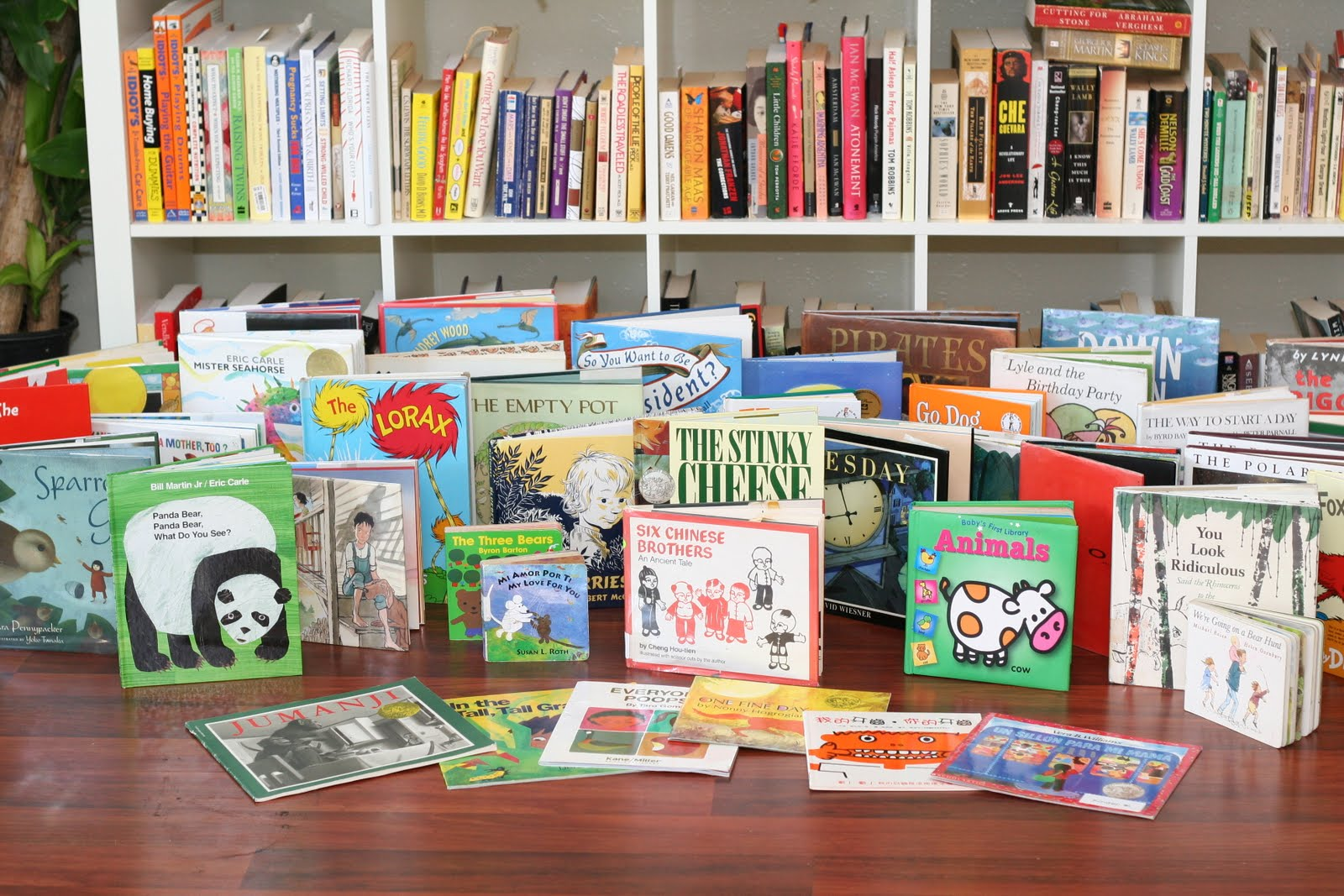 friends of plano library book sale