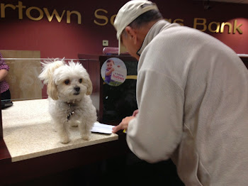 Smitty and Dog Toby Do Their Banking at Dog-Friendly WSB