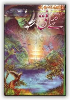 Naey Ufaq Digest July 2013 pdf