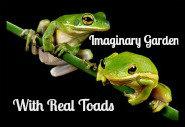 Imaginary Garden…