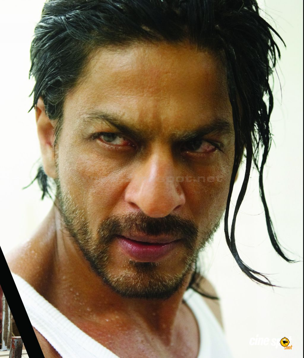 Shahrukh Khan Most Popular Images Actor Actress Images
