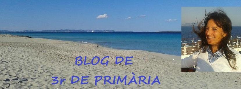 3r PRIMÀRIA SON QUINT