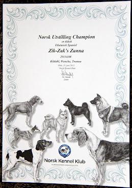 Zik-Zak's Zanna sin Diplom NUCH som hun ble i aug. 2011