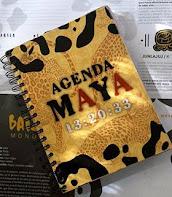 Agenda Maya 2019