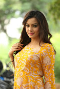 diksha panth latest glam pics-thumbnail-15