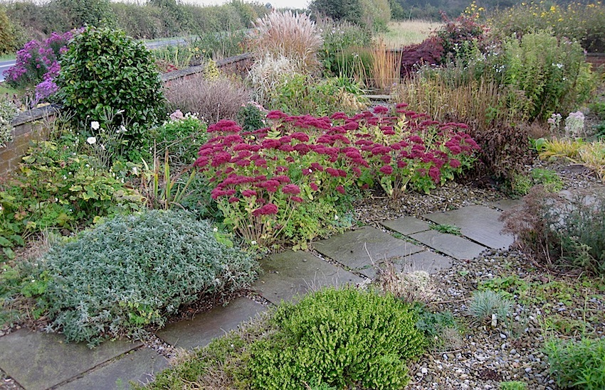 Landscaping front garden ideas gravel for Gravel garden designs