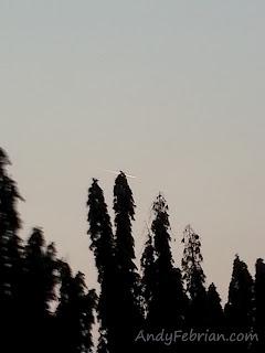foto komet 3