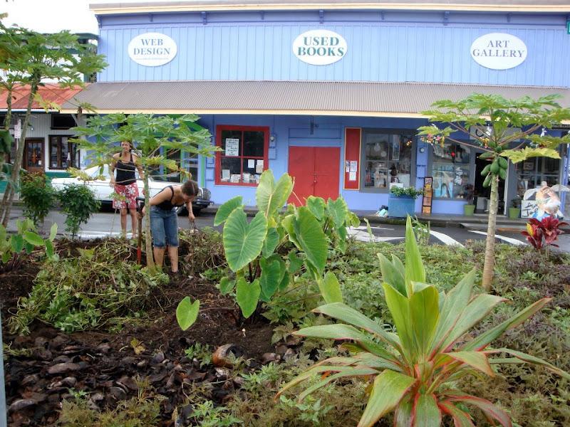 Hilo Hawaii - Edible Landscaping - Community Gardening