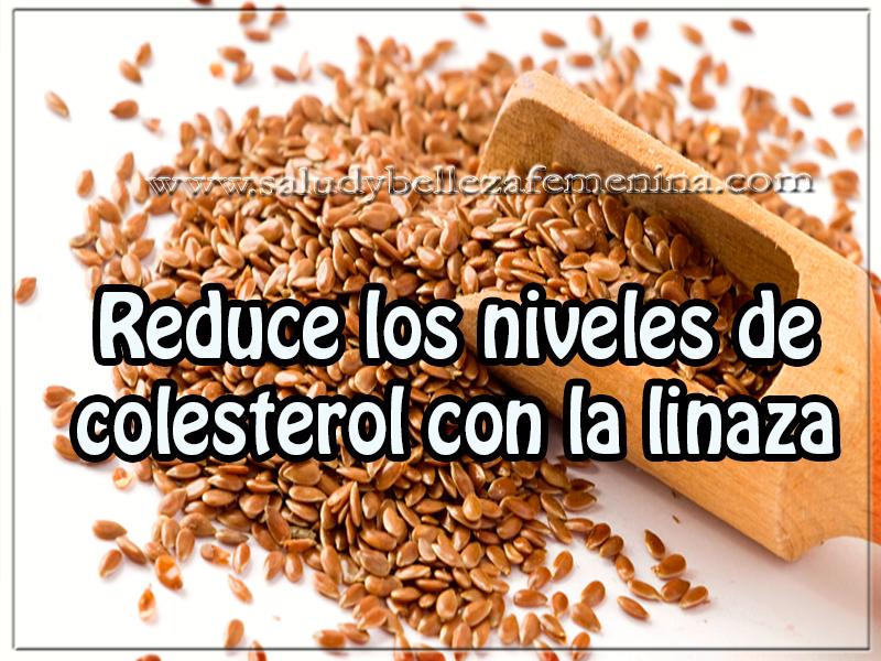 Bebidas para adelgazar , reduce los niveles de  colesterol con la linaza